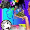 Arbeiten_mit_Photoshop__111