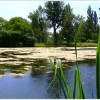 Outdooraktivitäten_2011__116
