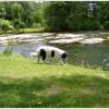 Outdooraktivitäten_2011__146