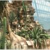Palmenhaus_und_Wüstenhaus__15